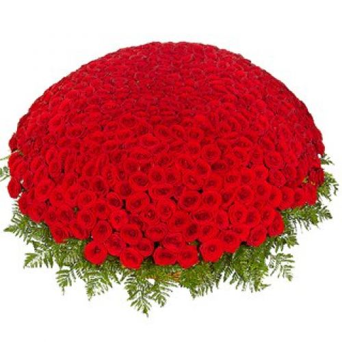 Купить на заказ Заказать 301  роза с доставкой по Караганде с доставкой в Караганде